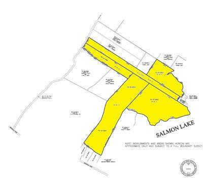 Salmon-Lake-Plan